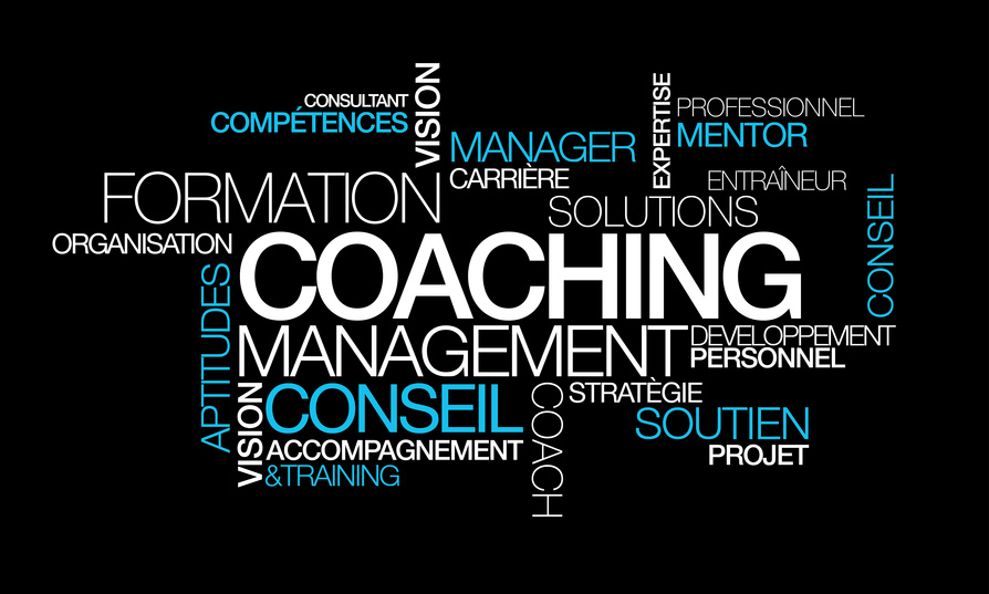 Coaching - Synthegral Conseil